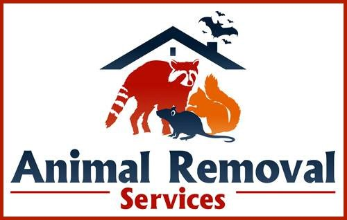 Virginia-Professional-Wildlife-Removal-Services-logo