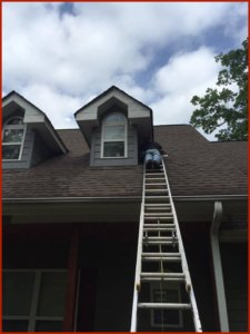 Richmond VA Bat Removal Services Sealing A Dormer