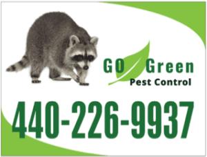 Cleveland bat removal - go green pest control